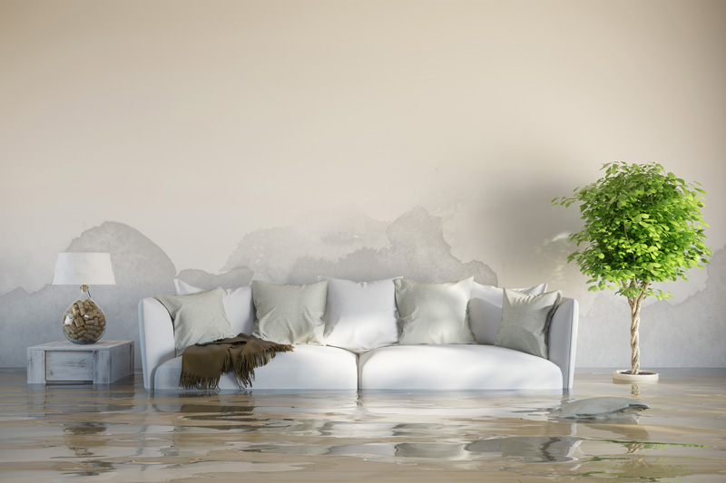 Couch Water Damage