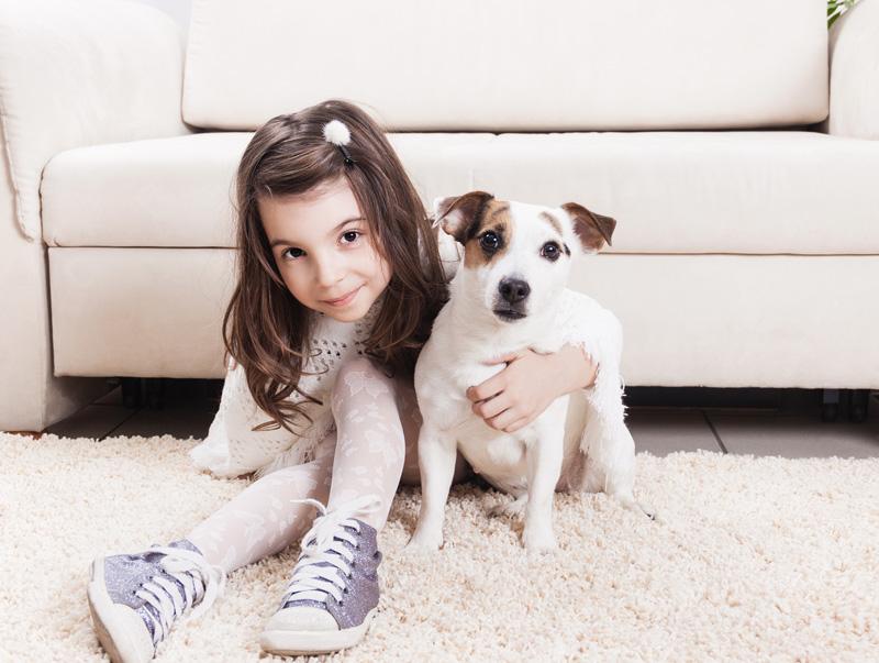 Kid Dog Carpet